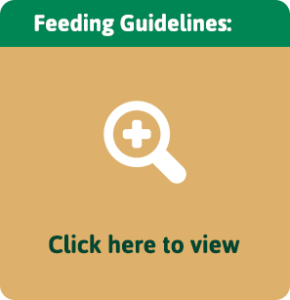 feeding-guidelines-preview-290x300